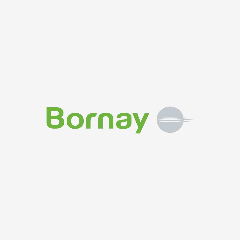 BORNAY fabricante de aerogeneradores